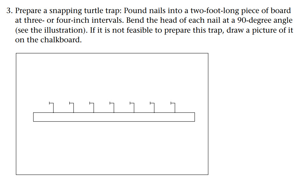 snapping turtle trap Temptation: Like a Snapping Turtle Trap